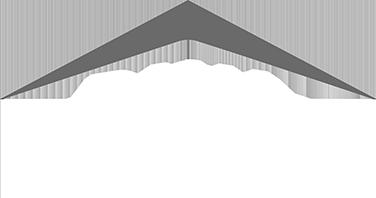 pt1-clients_0012_DANA_logo_brand